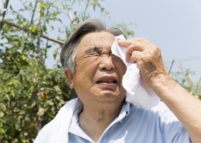 Người cao tuổi rất dễ bị tụt huyết áp